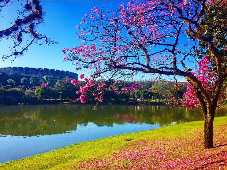 Lagoa da Pampulha - fotos externas para casamento em Belo Horizonte